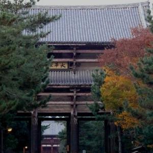 奈良 東大寺 2010/11/29
