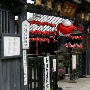 2006 奈良町 2006/1/8