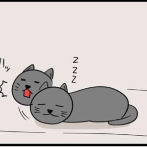 猫の心当たり