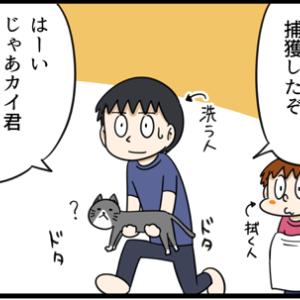 ネコを洗ってみたら意外にも・・・