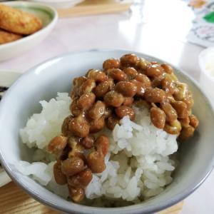 原付2種で行く納豆工場の納豆食べ放題食堂ランチツーリングin大阪豊能余野
