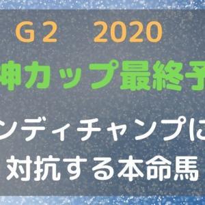 【無料競馬予想】2020阪神カップ インディチャンプに対抗できる本命馬