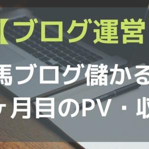 【ブログ運営】競馬ブログって儲かる?~雑記記事削除後1ヶ月のPV・収益~