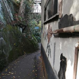 尾道散歩⑧~猫の細道