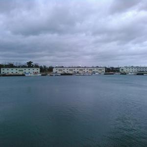 新湊東漁港、アジング