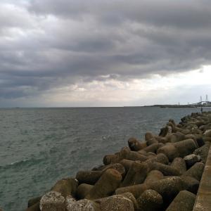 新湊西漁港 穴釣り