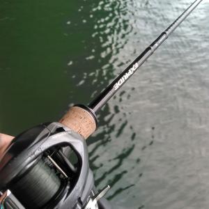 人生で一番楽しく、悔しかった釣り