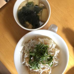 14.しらすおろし(丼)
