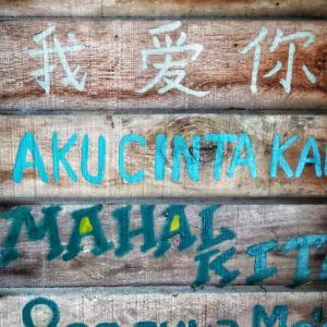 【子育て教育】トリリンガル育児は3言語の皿回し⁉️