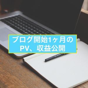 ブログ開始1ヶ月目のPV、収益公開