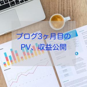 ブログ3ヶ月目のPV、収益公開