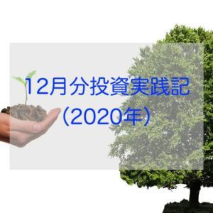 12月分投資実践記(2020年)
