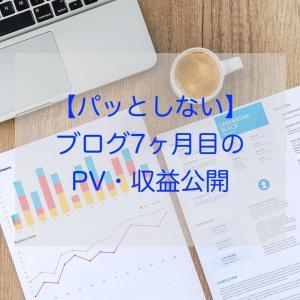 【パッとしない】ブログ7ヶ月目のPV・収益公開