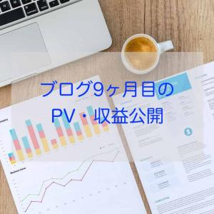 【ちょっと変化あり?】ブログ9ヶ月目のPV・収益公開