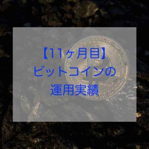【11ヶ月目】ビットコインの運用実績