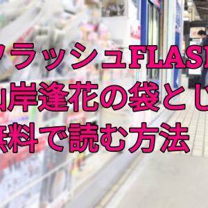FLASH(フラッシュ)山岸逢花の袋とじを無料で読む方法!電子書籍でも読める?