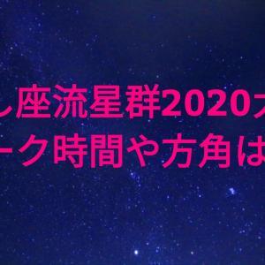 しし座流星群2020大阪のピーク時間・方角は?おすすめ観測スポット情報