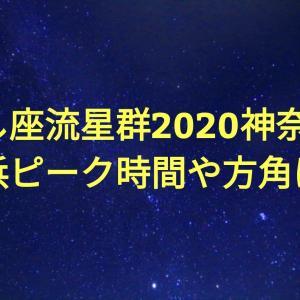 しし座流星群2020神奈川(横浜)ピーク時間・方角は?おすすめ観測スポットも