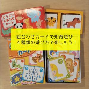絵合わせカードで知育遊び|4種類の遊び方で楽しもう!