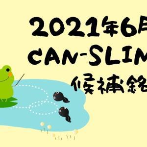 2021年6月CANSLIM銘柄候補