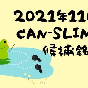 2021年11月CANSLIM銘柄候補