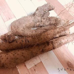 自然薯〜大好物〜
