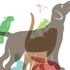 【PetHeart 】ペットと飼い主の嬉しいをサポートするアプリとは?