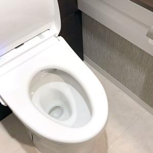 トイレの臭いが消えない…それ掃除だけが原因じゃないかも!