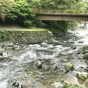 伊豆・箱根で唯一の川床!源泉掛け流し温泉「たつた」に行って来ました(お部屋編)