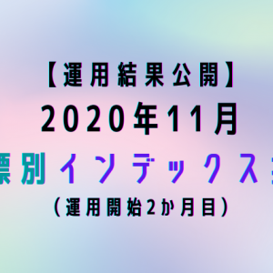 【運用結果公開】2020年11月目標別インデックス投資