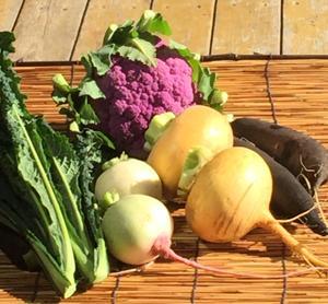 旬の西洋野菜