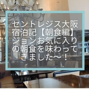 セントレジス大阪宿泊記☆ジョンお気に入りの朝食を味わってきました〜!