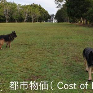 ~Part 9 (都市物価); Guard Dog-Sitting in AUS (Cost of Living)!!~ 大型ガードドッグのお世話係 / オーストラリア