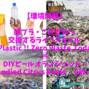 GW-30 脱プラ難関に挑戦!!⑩ DIYピールオランジェット・Candied Citrus Peels;環境問題・脱プラ/ごみゼロへ交換するライフスタイル;No Plastic !! Zero Waste !!