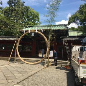 根津神社でまったり散歩