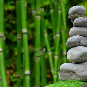 【zenhabits】モチベーションを維持する20の方法―その9