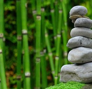 【Zenhabits和訳】モチベーションを維持する方法その20:進捗状況をチャート化する