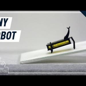 甲虫型ロボット、世界記録認定 in lieu