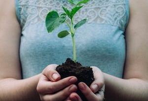 【環境問題】レジ袋有料化から、何が変わったのだろうか