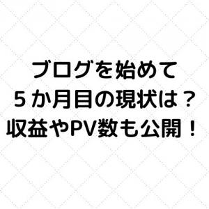 【ブログ5か月目の現状】アドセンス合格までや収益・PVも公開します