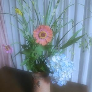 150円の花だけど・・・