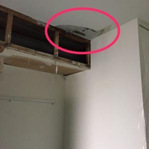 【カビ】築30年の中古マンションに入居して一年で壁にカビが大量発生したときのはなし7