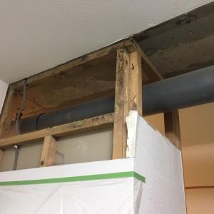 【カビ】築30年の中古マンションに入居して一年で壁にカビが大量発生したときのはなし9