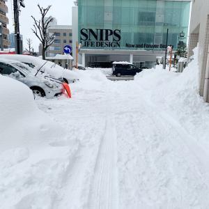 ベランダの雪かき
