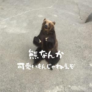 登山時の熊対策を考える