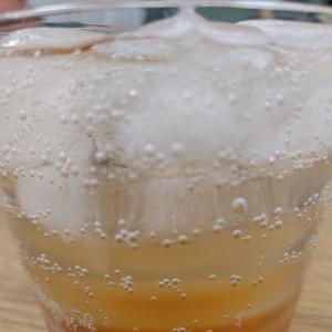 【炭酸が1リットル5円‼︎】断酒に絶対必要な炭酸ソーダ製造機 第1回/全2回