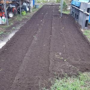俺の畑も耕転した。