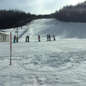 1日券1000円で楽しむスキー