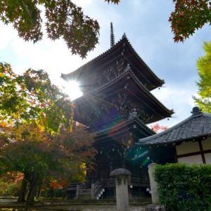 静かな京都の紅葉スポットを巡る~2020年最新情報