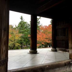 2020年 京都紅葉状況~南禅寺